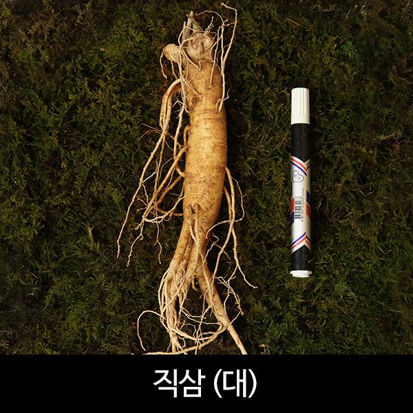 수삼 직삼 대편(8~10뿌리내외, 500g)